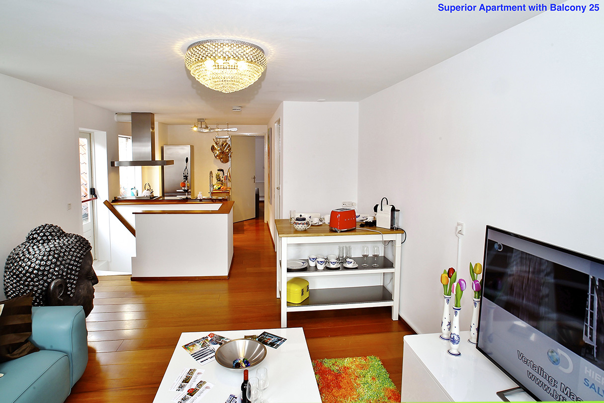 Superior_Apartment_with_Balcony_Delft_33_25_5